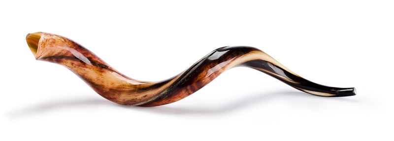 Image result for shofar